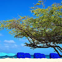 Umbrellas and Cabanas Along Eagle Beach Near Oranjestad, Aruba <br />