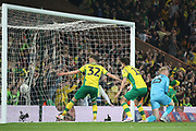 Goal. Norwich City forward Dennis Srbeny (32)  and Norwich City defender Timm Klose (15)  celebrates the late equalising goal during the EFL Sky Bet Championship match between Norwich City and Sheffield Wednesday at Carrow Road, Norwich, England on 19 April 2019.