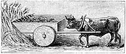 Reconstruction of Ancient Roman reaping cart, as described by Pliny. Aristotle believed that motion was a continuous pushing action, and that objects could only travel in a single direction at any one time, that is, in straight lines, not arcs. Engraving, 1890.