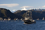 A tender waits while commercial fishing seiners set their nets around herring during an opening of the 2007 Sitka Herring Sac Roe fishery.