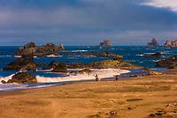 Harris Beach State Park, Brookings, Oregon USA.
