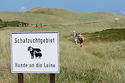 Sylt, Germany. Ellenbogen (Elbow).<br /> Sheep protection.