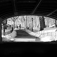 Winter in Central Park New York City, a little bit quieter, and a lot more chilled.