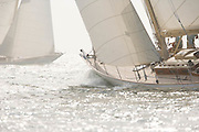 W Class White Wings racing in the Skyline Race at New York Classic Week.