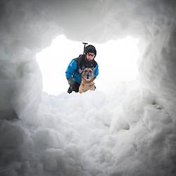 2010/01 Chiens d'avalanches et secours en montagne
