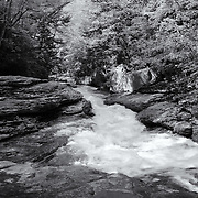 &quot;River of Life&quot;<br />