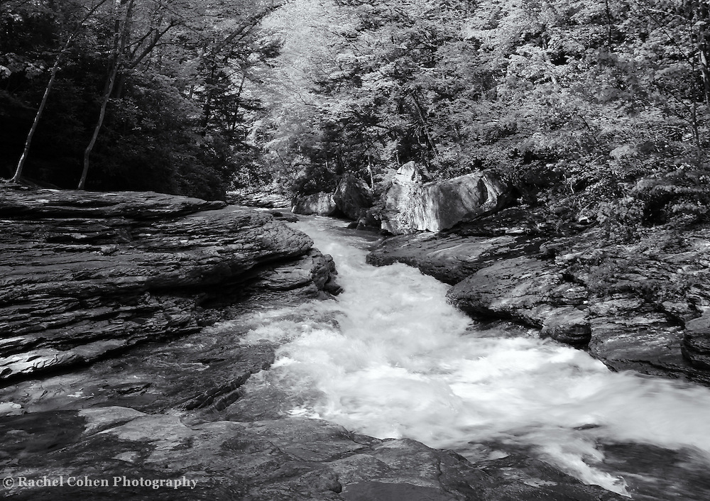 &quot;River of Life&quot;<br /> <br /> Wonderful rapidly flowing water among rocks and surrounded by a forest In PA.