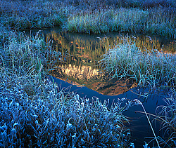 Marshland pool, surrounded by fall grasses lightly frosted in green and blue, with mountain reflected in pool