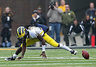November 05, 2011: Michigan Wolverines quarterback Denard Robinson (16) fumbles the ball during the second quarter of the NCAA football game between the Michigan Wolverines and the Iowa Hawkeyes at Kinnick Stadium in Iowa City, Iowa on Saturday, November 5, 2011. Iowa defeated Michigan 24-16.