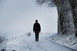 © Licensed to London News Pictures. 17/01/2016. Dorking, UK. A man walks his dog in the Surrey Hills. Snow has fallen in the South East for the first time this winter. Photo credit: Peter Macdiarmid/LNP