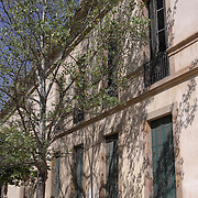 Building and Tree, Barcelona