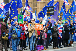 © Licensed to London News Pictures. 15/01/2019. London, UK. Anti-Brexit and Pro-Brexit demonstrators protest outside the Houses of Parliament. Later the evening after five days of debate, MPs will vote on British Prime Minister Theresa May's EU Withdrawal deal. Photo credit: Dinendra Haria/LNP