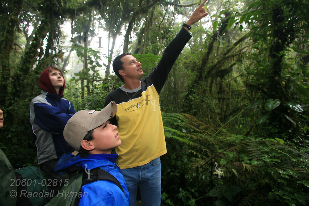 Ecoteach guide Alex Alvarez Rojas points out birds in rainforest as Luke Young (16, back) and Cloud Forest School student Douglas Rodriguez Cruz (12, front) look up at Santa Elena National Park, Costa Rica.