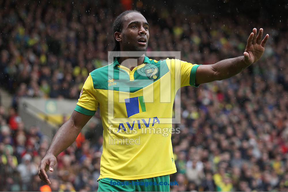 Cameron Jerome of Norwich during the Sky Bet Championship match at Carrow Road, Norwich<br /> Picture by Paul Chesterton/Focus Images Ltd +44 7904 640267<br /> 04/10/2014