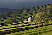 Stunning grade II listed barn conversion to rent in the Yorkshire Dales near Garside and Hawes.<br /> <br /> https://www.ownersdirect.co.uk/accommodation/reviews/write/p6834745 Sunrise over a hilltop wood on the outskirts of Hawes a centre for sheep sales and tourism in the Yorkshire Dales National Park, England, UK Stunning grade II listed barn conversion to rent in the Yorkshire Dales near Garside and Hawes.<br /> <br /> https://www.ownersdirect.co.uk/accommodation/p6834745 Sunrise over a hilltop wood on the outskirts of Hawes a centre for sheep sales and tourism in the Yorkshire Dales National Park, England, UK Stunning grade II listed barn conversion to rent in the Yorkshire Dales near Garside and Hawes.<br /> <br /> https://www.ownersdirect.co.uk/accommodation/reviews/write/p6834745 Sunrise over a hilltop wood on the outskirts of Hawes a centre for sheep sales and tourism in the Yorkshire Dales National Park, England, UK Stunning grade II listed barn conversion to rent in the Yorkshire Dales near Garside and Hawes.<br /> <br /> https://www.ownersdirect.co.uk/accommodation/p6834745