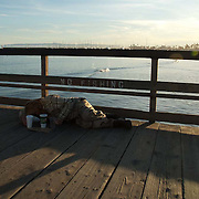Homeless person lying on the boardwalk. Santa Barbara, CA.