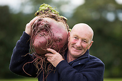 © Licensed to London News Pictures. 15/09/2017. Harrogate UK. Jo Atherton with his prize winning Beetroot at the Giant Vegetable competition at this years Harrogate Autumn Flower Show in Yorkshire. Photo Credit: Andrew McCaren/LNP