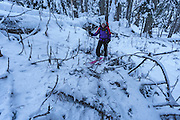 Bushwhacking through devil's club with a 3 inch snowbase: not the ideal ski date.