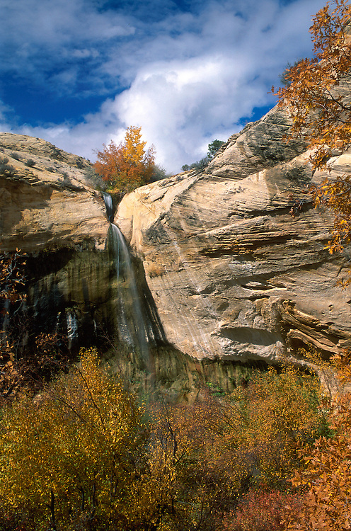Upper Calf Creek Falls  .Grand Staircase Escalante NM