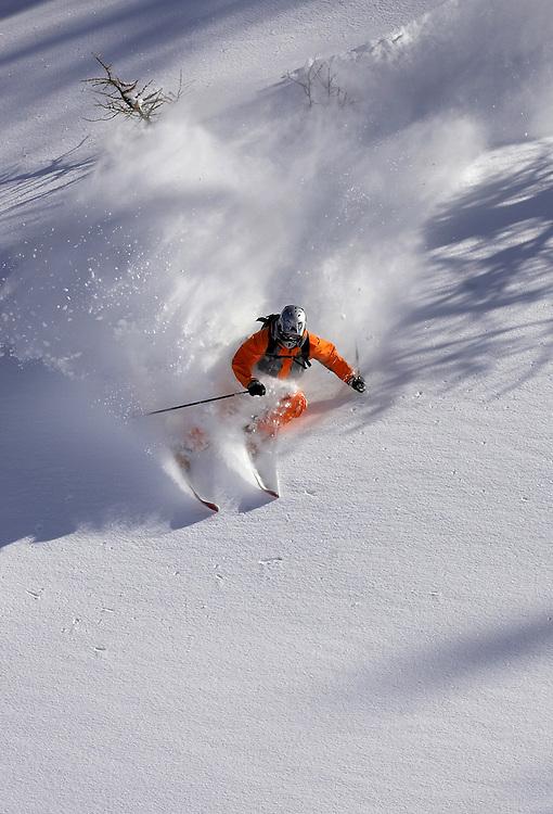 Skier turning in fresh powder snow, Serre Chevalier Valley, France