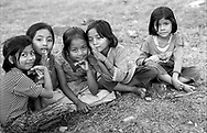 A group of curious girl chatting on a grass in front of their school.