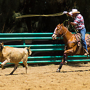Rodeo Test 2