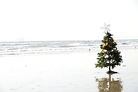 Single Christmas tree decorated with seaweed sits alone in the sand at the beach near the water.
