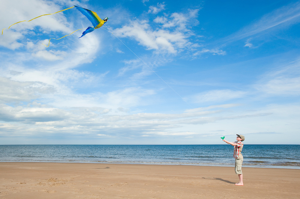 Boy flying a macaw kite on the beach