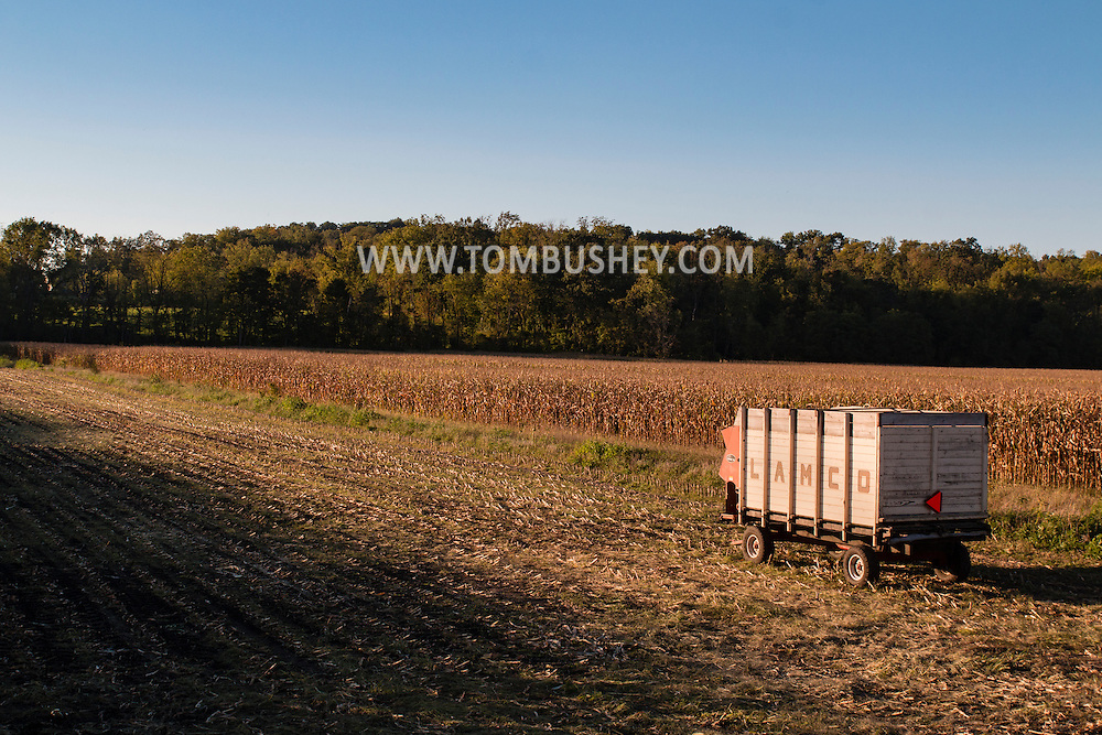Goshen, New York - A Lamco storage wagon in a cornfield at sunset on Sept. 17, 2015.
