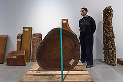 "© Licensed to London News Pictures. 03/03/2020. LONDON, UK. A staff member views wood samples from the Economic Botany Collection in Kew Gardens.  Preview of ""Cambio"" by Formafantasma, an Italian design duo based in Amsterdam.  The exhibition is an ongoing investigation into the governance of the timber industry and takes place at the Serpentine Sackler Gallery 4 March to 17 May 2020.  Photo credit: Stephen Chung/LNP"