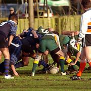 Rugby 't Gooi - Dendermondse Rugby Club ING-beker