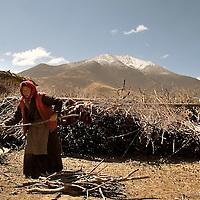 Images of Tibet, Lasha and the countryside. Tibet, China. Photos:Bernardo De Niz