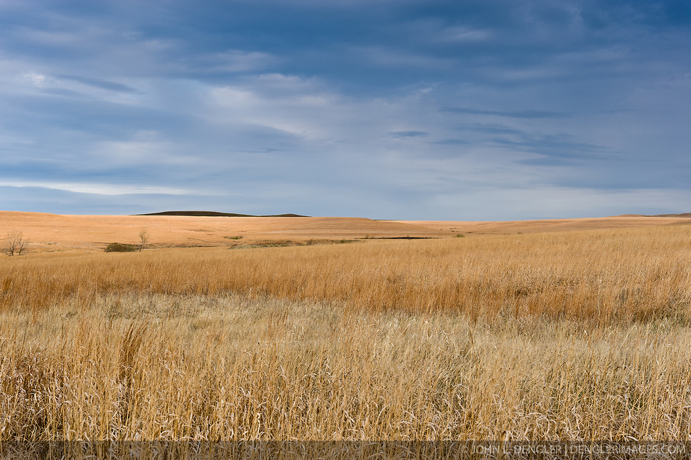 Morning sunlight bathes the rolling hills of the nearly 11,000 acre Tallgrass Prairie National Preserve in the Flint Hills of Kansas in Chase County near the towns of Strong City and Cottonwood Falls. Less than four percent of the original 140 million acres of tallgrass prairie remains in North America. Most of the remaining tallgrass prairie is in the Flint Hills in Kansas. Tallgrass Prairie National Preserve is the only unit of the National Park Service dedicated to the preservation of the tallgrass prairie ecosystem. The Tallgrass Prairie National Preserve is co-managed with The Nature Conservancy.