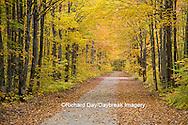 64776-01406 Road in fall color Schoolcraft County Upper Peninsula Michigan