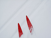 Red cross country skis crossing a track in the snow.