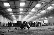 Warehouse Squat Rave, Tottenham Hale, London 2010.