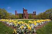 USA, Washington, DC. Haupt Garden outside the Smithsonian Institution Castle.