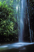 Twin Falls<br /> Hana, Maui, HI