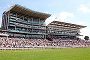 A packed Grandstand at York Racecourse, York, United Kingdom on 14 July 2018. Picture by Mick Atkins.