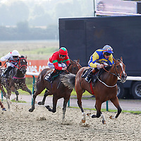 Lingfield 24th September 2013