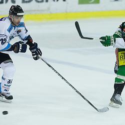 20121012: SLO, Ice Hockey - EBEL League, 11th Round, HDD Telemach Olimpija vs SAPA Fehervar AV 19
