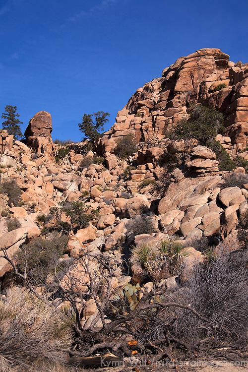 USA, California, Joshua Tree. Hidden Valley Rock Formations, Joshua Tree.