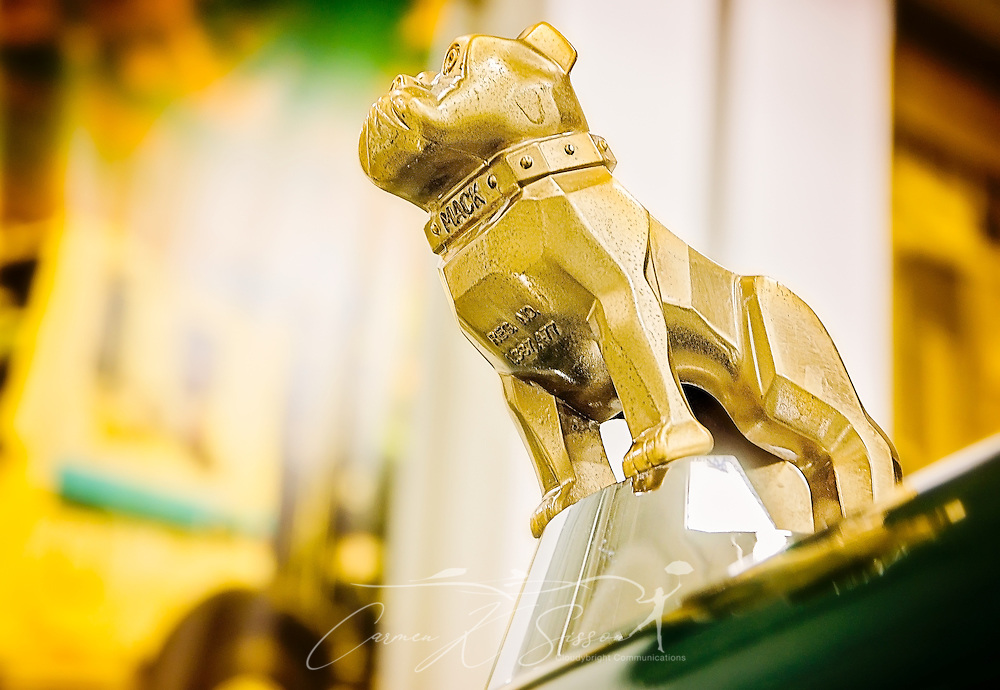 A gold bulldog hood ornament rides on the hood of a 1986 Mack roll off truck at Waste Pro, March 18, 2016, in Sanford, Florida. The company has a garbage truck museum on the premises and restores antique garbage trucks. The gold-plated bulldog indicates that the truck has all Mack components, including a Maxidyne engine. (Photo by Carmen K. Sisson/Cloudybright)