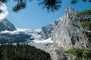 Blick auf Rosenlauigletscher mit Wetterhorn