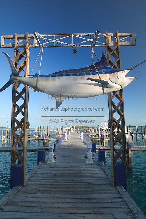 Giant marlin at the marina docks at Big Game Resort in Alice Town on the tiny Caribbean island of Bimini, Bahamas.