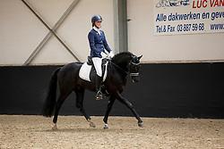 026, Nia Domo's Bolero<br /> Brp Keuring - Stal Hulsterlo - Meerdonk 2016<br /> © Hippo Foto - Dirk Caremans<br /> 17/03/16