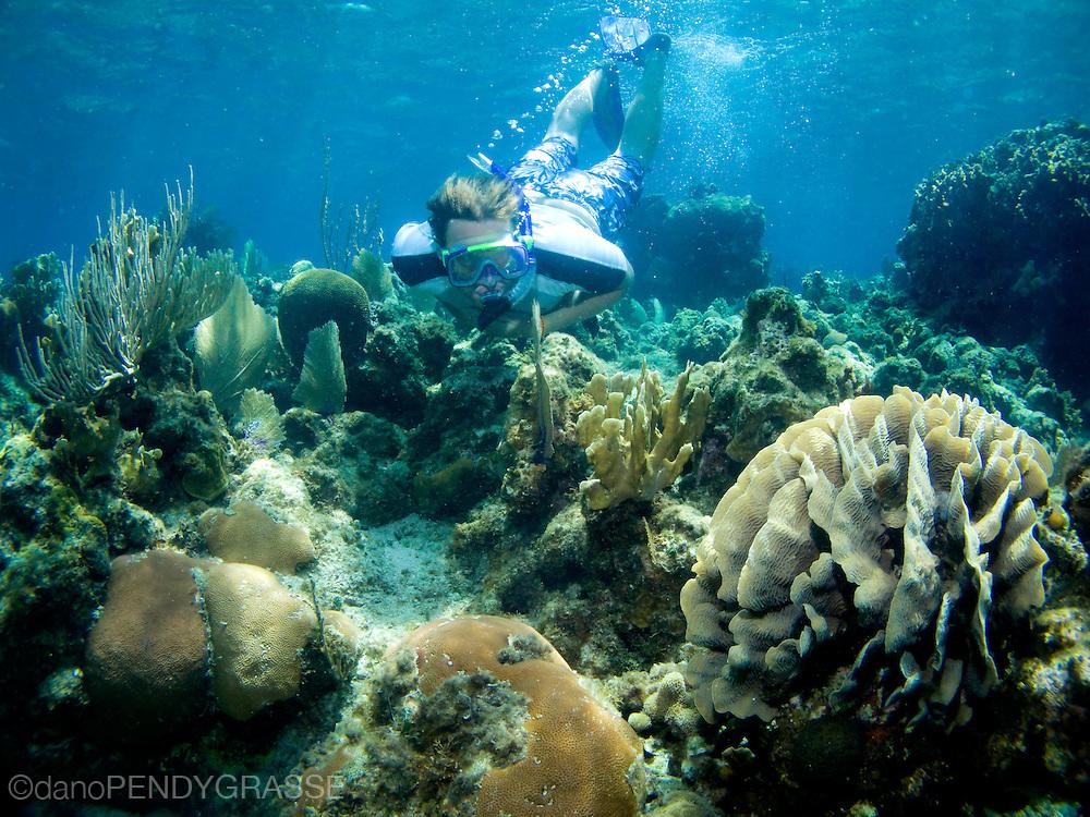 A snorkeller in Roatan, Honduras checks out the pristine coral.