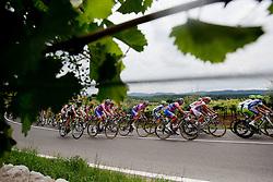Peloton during 2nd Stage (189,6 km) at 18th Tour de Slovenie 2011, on June 17, 2011, in Ljubljana, Slovenia. (Photo by Vid Ponikvar / Sportida)