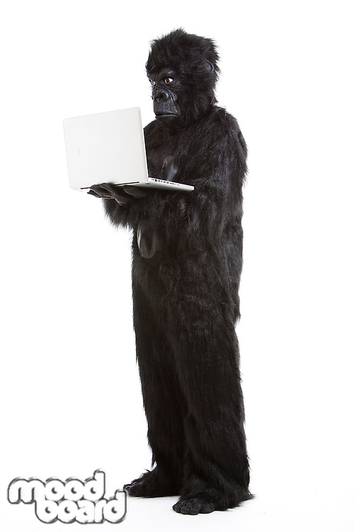 Young man in gorilla costume using laptop against white background