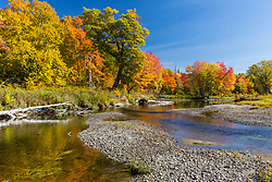 Fall foliage on the East Branch of the Penobscot River in Maine's Northern Forest.